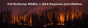 Ft. McMurray Wildfire - IBAA Response