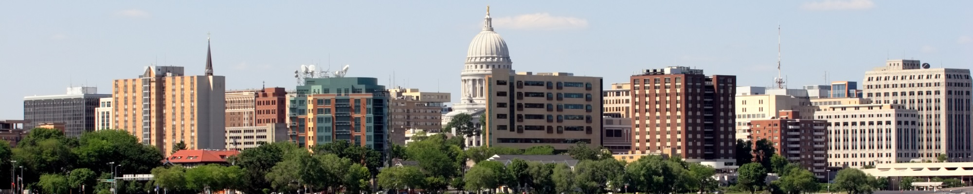 Madison Skyline during the Day