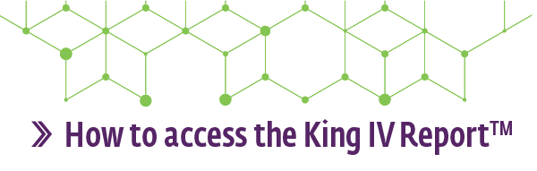 IoDSA - How to access the King IV Report