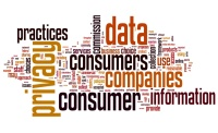 Consumer Data & Privacy: Contractual Risk Management Strategies (Live Webinar)