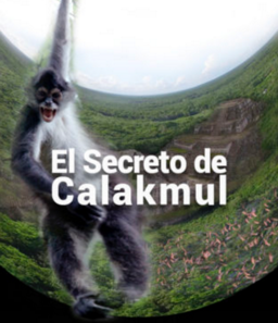 image for The Secret of Calakmul