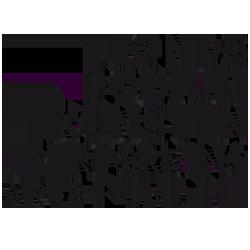 Performing Arts Fund NL