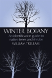 Winter Botany #109