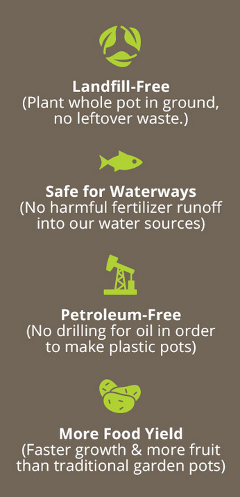 SelfEco garden infographic