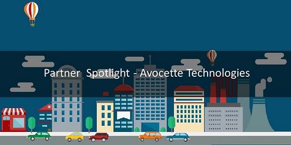 Avocette Banner Image