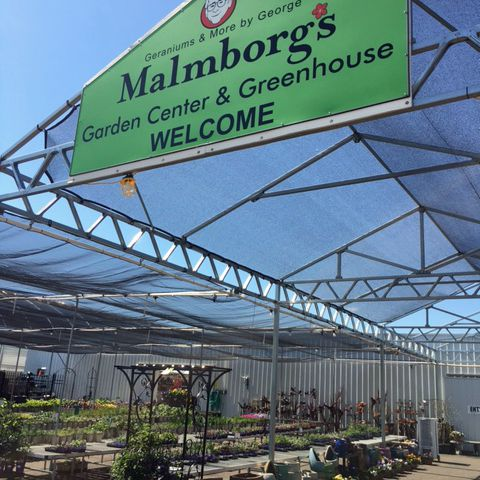 Malmborgu0027s Garden Center U0026 Greenhouse, Rogers