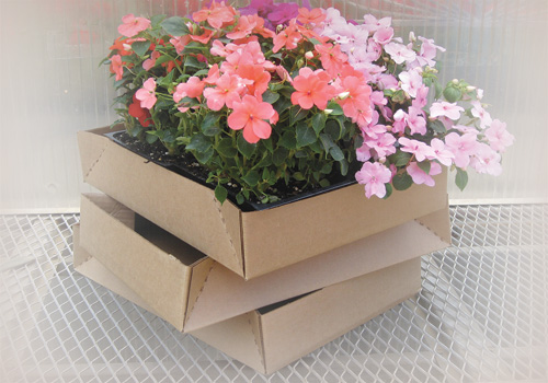 Garden Center Trays