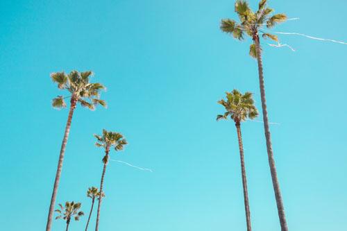 Southern California Escape