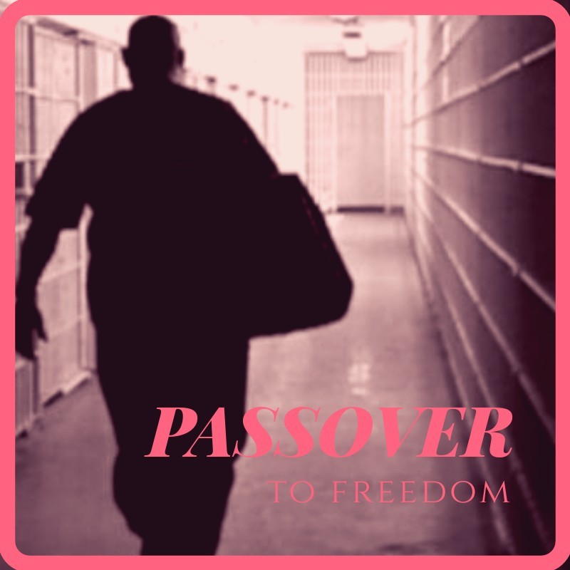 Passover to Freedom
