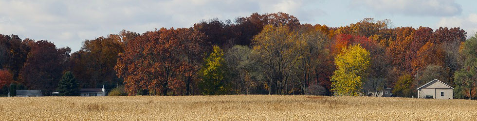 midwest fields in fall