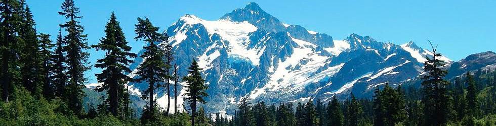 landscape of central california coast