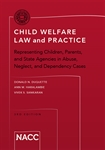 Child Welfare Law and Practice (The Red Book)