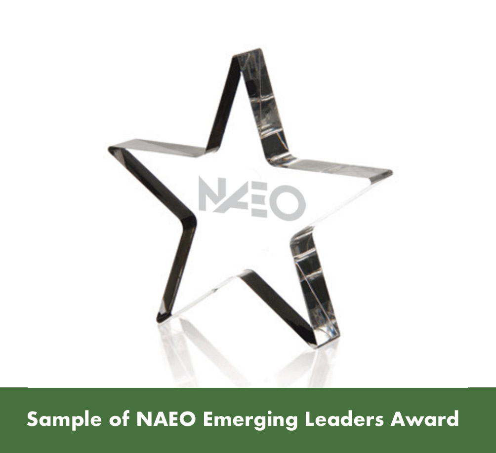 NAEO Superior Agent Award Sample