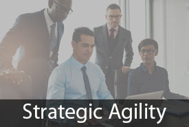 Strategic Agility Webinars