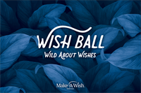 2020 Wish Ball - WILD ABOUT WISHES (Lincoln)