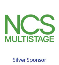 Silver - NCS