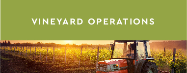 Vineyard Operations