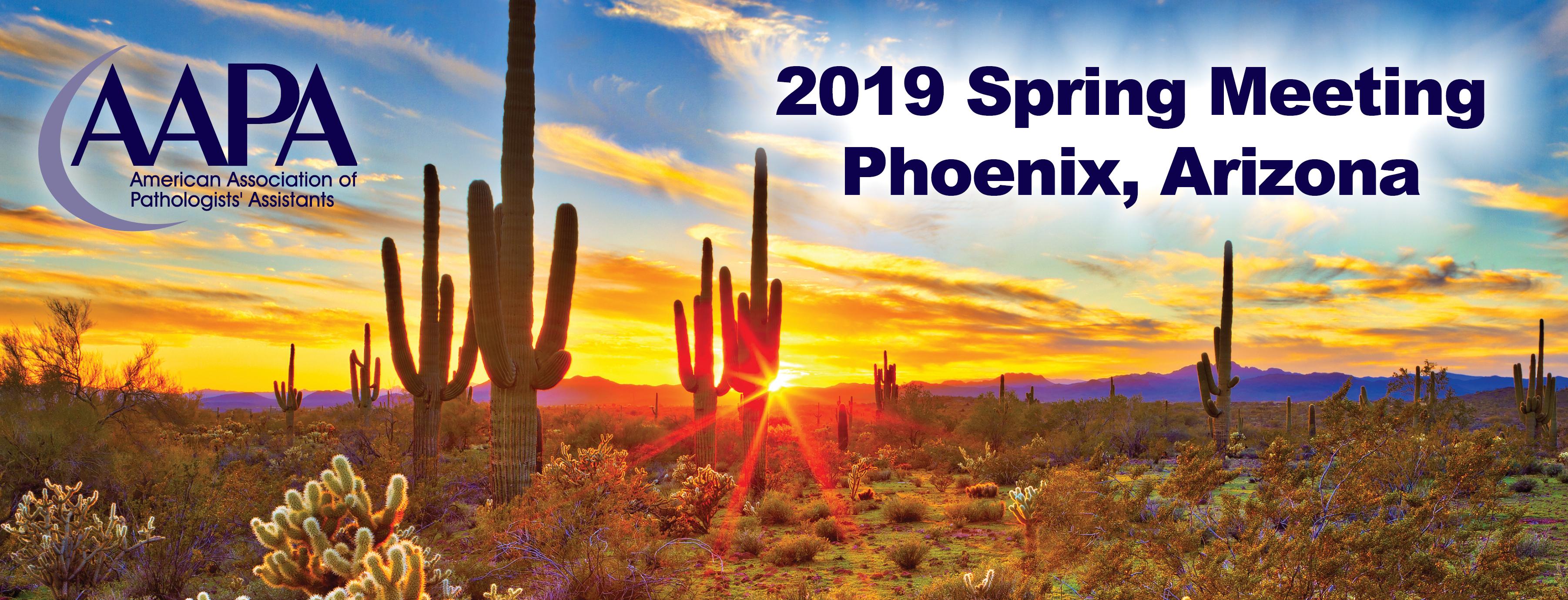 8th Annual AAPA Spring Meeting in Phoenix - American
