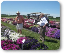 Flower TRials Manheim