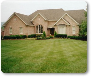 Keep Lawns Dense and Healthy!
