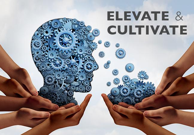 Elevate & Cultivate