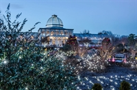 SAVE THE DATE! 2020 RAM Family Night at Lewis Ginter's GardenFest of Lights