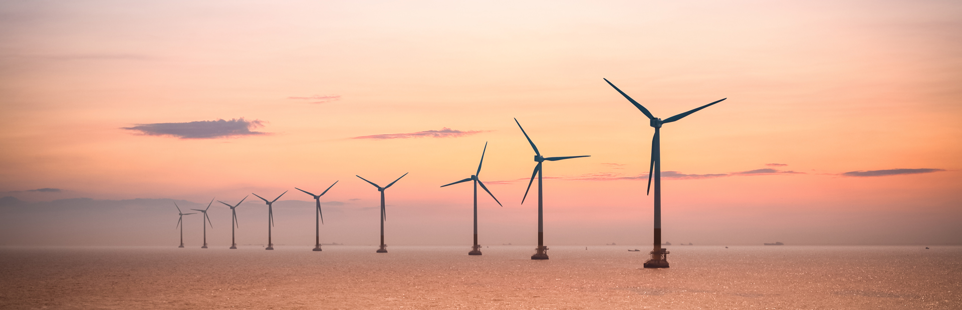 Offshore Wind Project Intelligence
