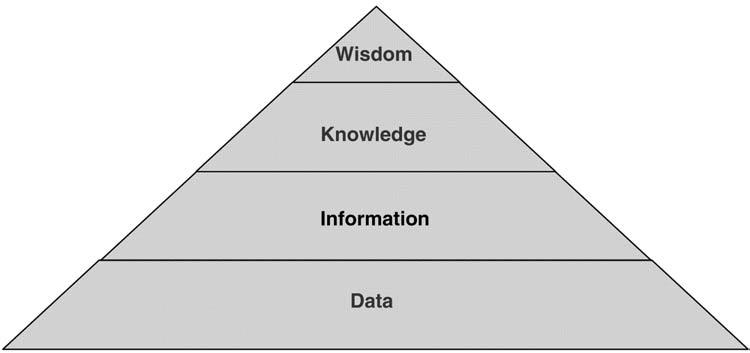 The Intelligence Pyramid