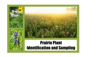 Prairie Plant Identification and Sampling
