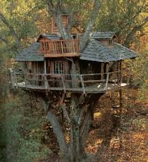 Image result for tree house