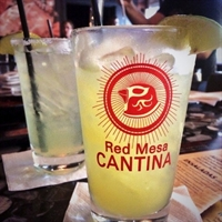 Young Lawyers Happy Hour Social at the Red Mesa Cantina