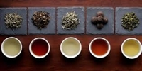 St. Pete Bar TEA TASTING ~ An Evening of Wellness and Relaxation