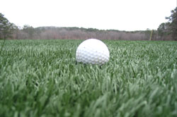 Synthetic Turf Golf