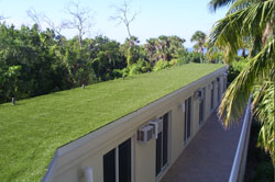 Synthetic Turf Rooftop