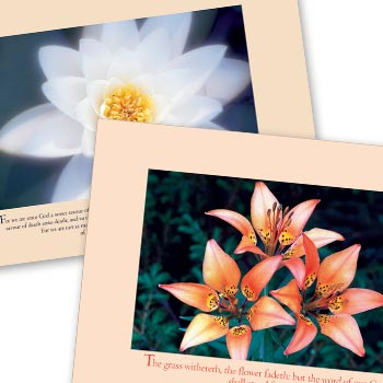 Picture of A3 Picture Text Posters