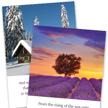 Picture of Series N Greetings Cards