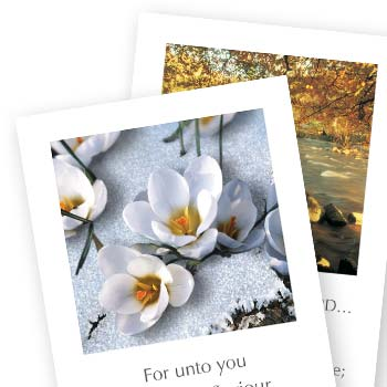 Picture of Series J Greetings Cards