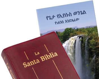 Picture of two non-English Bibles