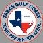 Texas Gulf Coast Crime Prevention Assn Mini Conference 2019