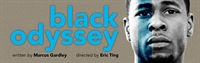An Evening for Friends of Theatre Bay Area at Cal Shakes' black odyssey