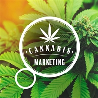 Cannabis Marketing: Making the Agency Connection