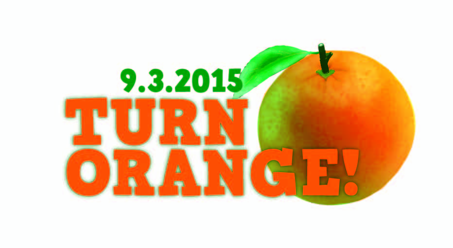 Federation of Virginia Food Banks Turn Orange 2015 logo