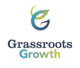 Grassroots Governance: Building a Structure that Fits (Pilot 2)