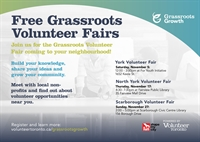 Grassroots Governance: Building a Structure that Fits (North York Volunteer Fair)