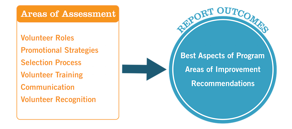 The Process - Areas of Assessment to Reporting of Outcomes